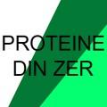 Proteine din zer (Whey protein)