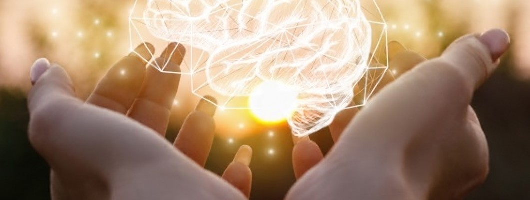 Fosfolipidele: cel mai bun supliment pentru activitatea creierului