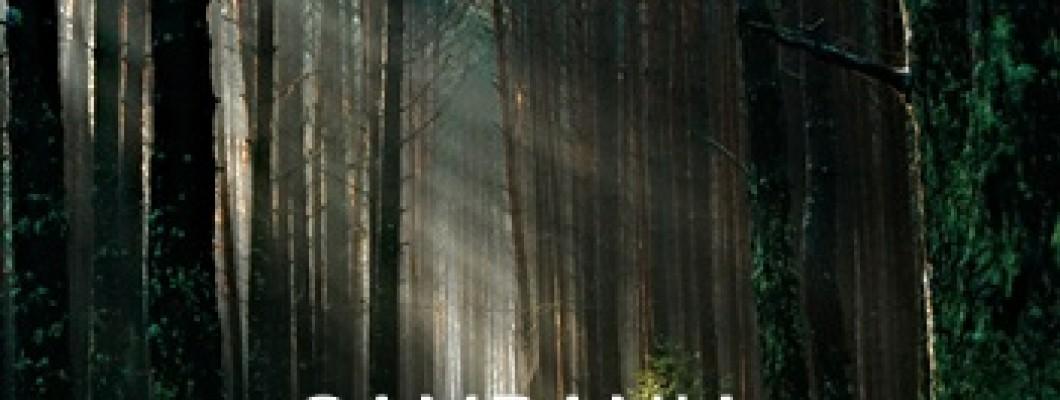 Campania WWF Împreună salvăm pădurile României