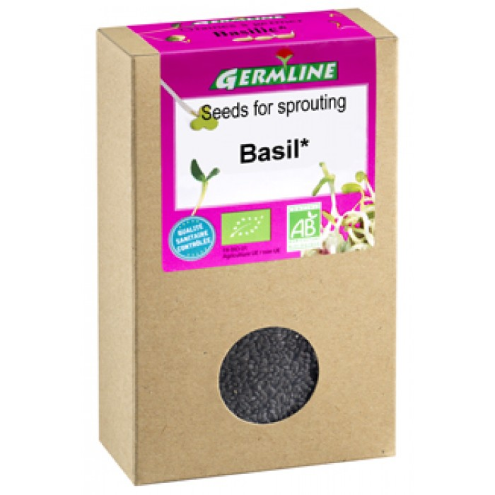 Busuioc seminte pentru germinat bio (100g)