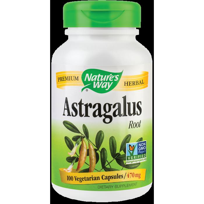 Astragalus (100 capsule)