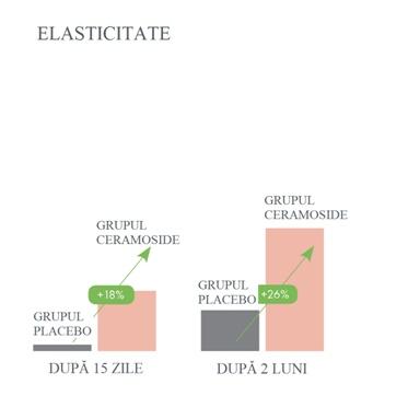 evolutie elasticitate