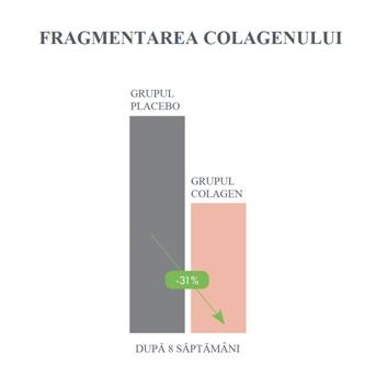 fragmentarea colagenului